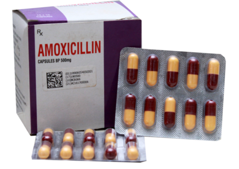 Amoxil 500mg Capsule Dosage | Best Prices | Excellent Quality